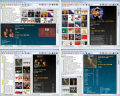 Collectorz.com Music Collector 10.2.1