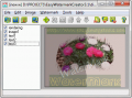 Easy Watermark Creator 3.1