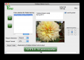 Tbw - mac watermark software 3.6